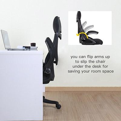 Fabulous Zenith Berlman Ergonomic High Back Mesh Office Chair Inzonedesignstudio Interior Chair Design Inzonedesignstudiocom